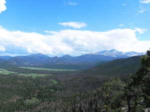 Trail Ridge Road View