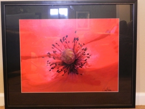 framed 'Valentine Seeds'
